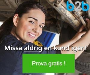 b2b300