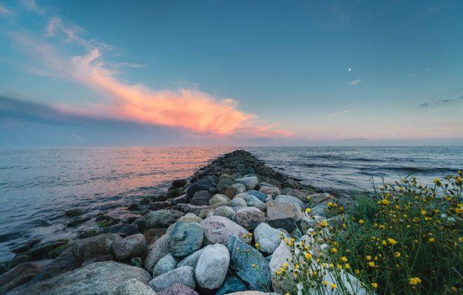 A groyne on the south coast of Sweden